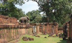 East Mebon in Angkor, Siem Reap Cambodia  Date: 952 AD, Reign: Rajendravarman II, Religion: Hindu (Shiva)  Read more: http://www.globaltravelmate.com/asia/cambodia/angkor/angkor-temples/541-siem-reap-east-mebon.html#ixzz2XbRVjTQk
