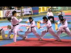 The Best Taekwondo Demonstration Ever