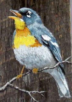 Parula norteña songbird barnwood auténtico rústico pintado Wood Painting Art, Painting & Drawing, Watercolor Paintings, Painted Driftwood, Organic Art, Reclaimed Wood Art, Pallet Art, Bird Drawings, Recycled Art