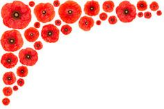 Red Poppy Flower Clipart - Clipart Suggest Pennant Banner Template, Pennant Banners, Red Poppies, Red Flowers, Flower Clipart, Flower Frame, Clip Art, Crafts, Flyers