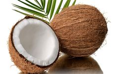 The #Coconut tree is a part of the palm family is used with various health concerns  • Helps in treating #diabetes. • Reduces risk of #heartdisease. • Used as a #skinmoisturizer. • Lowers systolic #bloodpressure. • Used as good source of #potassium.  Read more:- http://falcon18.com/health-blog/Best-Ingredient-And-Herbs/To-Know-About-Coconut/Benefits-and-Advantages-of-Coconut.html Buy:- http://www.falcon18.com/about-Coconut-and-benefits-of-Coconut.ingredient?1342