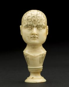 Ivory phrenology head.