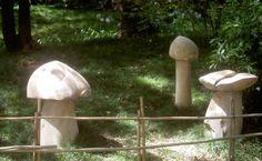 Natureza esculpida, Jardim Botânico de Lisboa