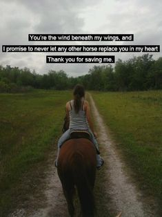 It goes without saying that every horse deserves their own special place in our…