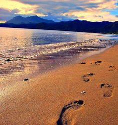 footprints in the sand Footprints In The Sand Poem, Color Collage, Biblical Art, Summer Colors, All The Colors, Paths, Scene, This Or That Questions, Sunset