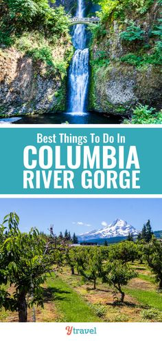 Best things to do in Columbia River Gorge, Oregon including waterfalls, hikes, scenic drives, wineries, and fruit picking. Travel tips including waterfalls, hikes, scenic drives, wineries, and fruit picking. This travel guide includes the best things to do in this beautiful Oregon travel destination on your Oregon roadtrip. Favorite activities and attractions with kids including hiking opportunities! #Oregon #USAtravel #roadtrip #roadtrips #Oregontravel