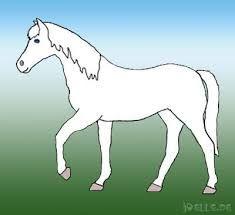 Bildergebnis für vorlage pferd