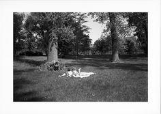 Jeunes filles allongées dans le parc - Tirage 20x30