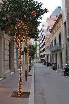 Orange Trees in Christmas Lights: Barcelona Christmas Markets
