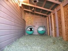 Good Pic outdoor dog kennel shed Style Nowadays, pets are whole family members. Good Pic outdoor dog kennel shed Style Nowadays, pets are whole family members, but it's not at Hotel Pet, Dog Kennel Designs, Kennel Ideas, Outside Dogs, Dog Pens Outside, Diy Outside Dog House, Dog House Plans, Dog Yard, Dog Rooms