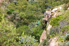 Do the canopy tour in Magaliesberg with my Sister Heidi. Bird Feeders, Canopy, South Africa, Tours, Gallery, Outdoor Decor, Image, Canopies, Porch Awning