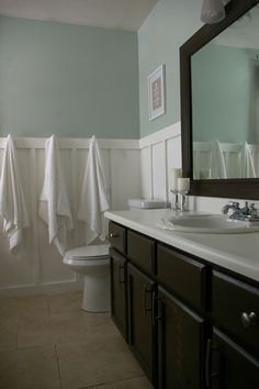 Sherwin Williams Sea Salt. Color idea for our bathroom. (via: imakehomes)