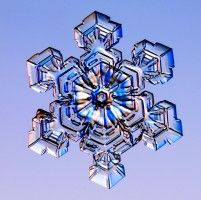 Snowflake photography - in honor of the 125th anniversary of the worlds largest snowflake! (01-28-1887)