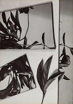 Florence Henri, Still Life Composition, 1931