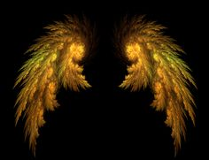 Angel Wings by Tigoth.deviantart.com on @deviantART