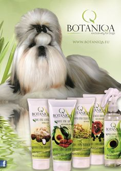Second Botaniqa poster is available now! Ask for it in next order ;)