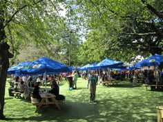 We're back for 2013! #assemblyfest #2013 #edfringe Relaxing in George Square Gardens at festival time.