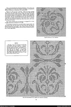 Mary Card's crochet book. no. 4 : containing designs & charts in the new filet crochet for Australian and New Zealand crochet workers.. - Page 14