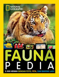 Faunapedia by Dr. Lucy Spelman