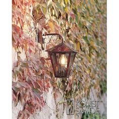 Lighting Styles offers a range of outdoor wall lighting including this copper and glass rated hanging wall lantern. From Lighting Styles. Outdoor Wall Lamps, Outdoor Walls, Outdoor Lighting, Copper Wall Light, Led Außenstrahler, Color Cobre, French Patio, Wall Mounted Lamps, Exterior Wall Light
