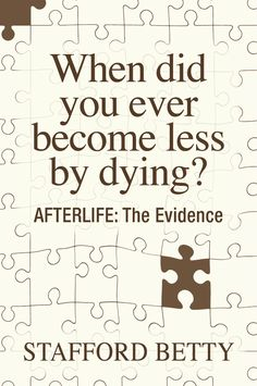 """""""When Did You Ever Become Less By Dying? AFTERLIFE: The Evidence"""" by Stafford Betty"""