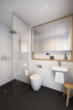 LOVE: vanity (wood, clean, open shelf), contrast tiles, simple unfussy toilet design, hint of wood for warmth