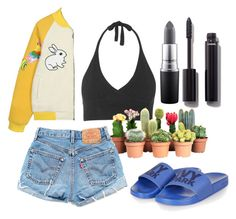 """Springish"" by lauracooperrrr on Polyvore featuring Topshop, Levi's, MAC Cosmetics and Chanel"