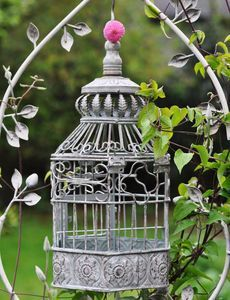 🇸🇦🇸🇦🇸🇦🇸🇦🇲🇴 Birdcage Ideas: More At FOSTERGINGER @ Pinterest.🇲🇴🇸🇦🇸🇦🇸🇦