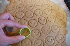 Free Graham Crackers beneficial bento: recipe for Gluten Free Graham Crackers - make ahead in bulk for lunch treatsbeneficial bento: recipe for Gluten Free Graham Crackers - make ahead in bulk for lunch treats Dessert Sans Gluten, Gluten Free Sweets, Gluten Free Cookies, Vegan Gluten Free, Wheat Free Recipes, Allergy Free Recipes, Gluten Free Graham Crackers, Grahm Crackers, Little Lunch