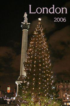 The Trafalgar Square Christmas tree, 2006
