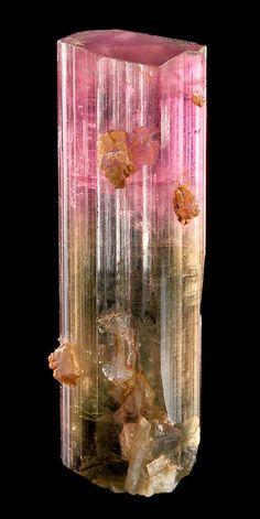Pretty bi-colored Tourmaline with attached Lepidolite!