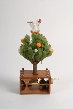 Orange Tree Automaton  -- I would love to see this in real life!