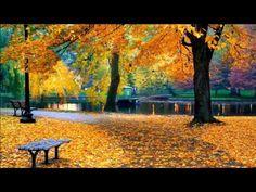 Vivaldi Autumn (Full HD) Classical music