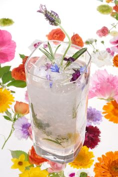 Though it may seem demure, lavender should be handled with a delicate touch in drinks lest it overpower other ingredients. Here, gently deployed, it lends its gorgeous floral flavor and aroma to a tall, icy and refreshing cobbler. (Photo: Davide Luciano for The New York Times)