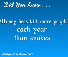 Cool Did You Know Facts www.research-chemical-wholesale.com