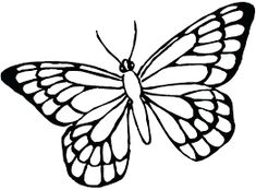 Butterfly outline drawing monarch butterfly printable coloring page free female pages outline printable simple butterfly outline Butterfly Outline, Simple Butterfly, Butterfly Clip Art, Butterfly Drawing, Butterfly Template, Butterfly Photos, Monarch Butterfly, Printable Butterfly, Butterfly Stencil