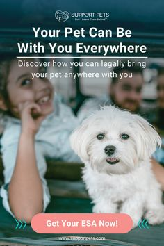 An Emotional Support Animal is more than a pet; they provide you with comfort and relief from stress, anxiety, depression, and other emotional ailments. pet products dog,house pet,origami dog,dog accessories,pet odor,dog love quote,diy dog,puppy dog,little cats,puppy ideas,cute pets,adorable pets,diy dog memories,diy pet ideas dog,christmas dog,dog and cat treats,dog ids,dog stuff pet care,dog area,cats pets,pretty dog,pets ideas,love of a dog,pet products,dog life,perfect dog,cat and… Emotional Support Animal, Dog Area, Pet Odors, Dog Id, Look At The Stars, Cat Treats, Diy Dog, Christmas Dog, Dog Quotes