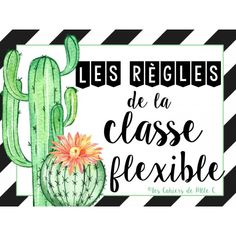 """Règles Classe Flexible """"Cactus"""" Classroom Organisation, Classroom Decor, New School Year, First Day Of School, Classroom Management Techniques, Core French, Class Decoration, Teaching, Voici"""