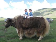 Mongol children on a yak...Mongolia, Central Asia