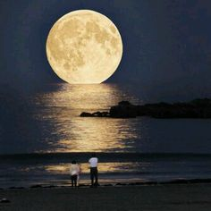 ambon #supermoon