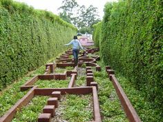 the balance maze; I want one of these in my yard! the balance maze; I want one of these in my yard! Outdoor Play Spaces, Kids Outdoor Play, Backyard For Kids, Outdoor Fun, Backyard Ideas, Natural Outdoor Playground, Outdoor Play Structures, Indoor Play, Backyard Games