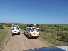 Masai Mara Budget Safaris Masai Mara Adventure Safaris