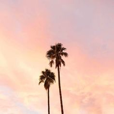Pink sunsets and palm trees #palmsprings #sunset #mbctravels
