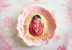 Paper Flower Newborn Photo Prop Keepsake by DreamEventsinPaper