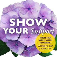 Happy Show support by giving or wearing a Who do you know who deserves to be celebrated? International Womens Day March 8, Popular Flowers, Ladies Day, Red Roses, Female, Celebrities, Bright, Inspiration, Happy