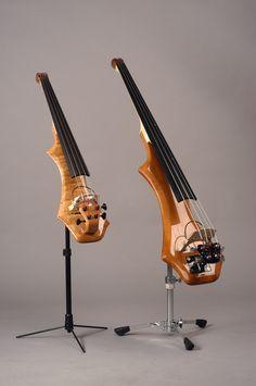 Photographs upright electric bass - borzii