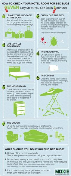 Bed Bugs, Bed Bug Safety, How to check your Hotel Room for Bed Bugs infographic, Seven Easy Steps You Can Do in Five Minutes to Find Bed Bugs in Your Hotel Room