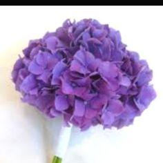Bridesmaid bouquets. Purple hydrangeas. Found it on google images.