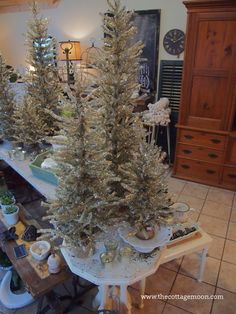 Christmas trees Merry Christmas To You, Christmas Wishes, Christmas Trees, Open House, Holiday Decor, Home Decor, Xmas Trees, Decoration Home, Room Decor