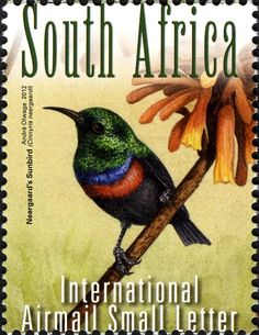 Stamps showing Neergaard's Sunbird Cinnyris neergaardi, with distribution map showing range South African Birds, African Great Lakes, World Birds, Postage Stamp Art, Wild Creatures, Small Letters, Fauna, Mail Art, Stamp Collecting